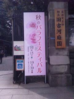 20111025_113055.jpg