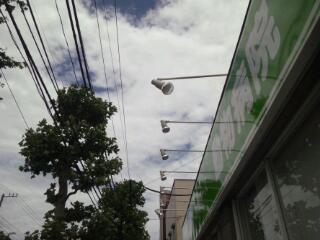 20120620_091752.jpg